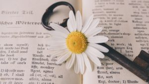 dictionary_with_flower